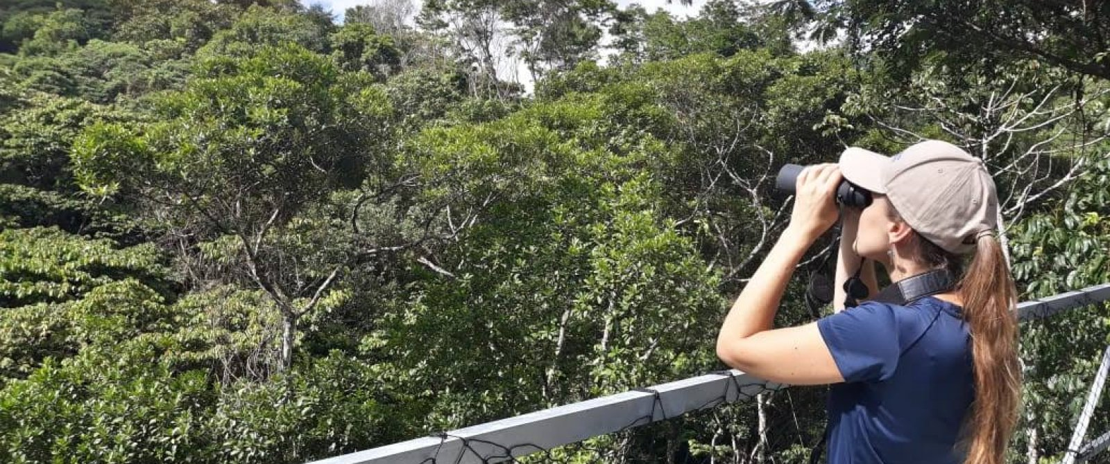 Birdwatcher with binoculars in the forests of Brazil