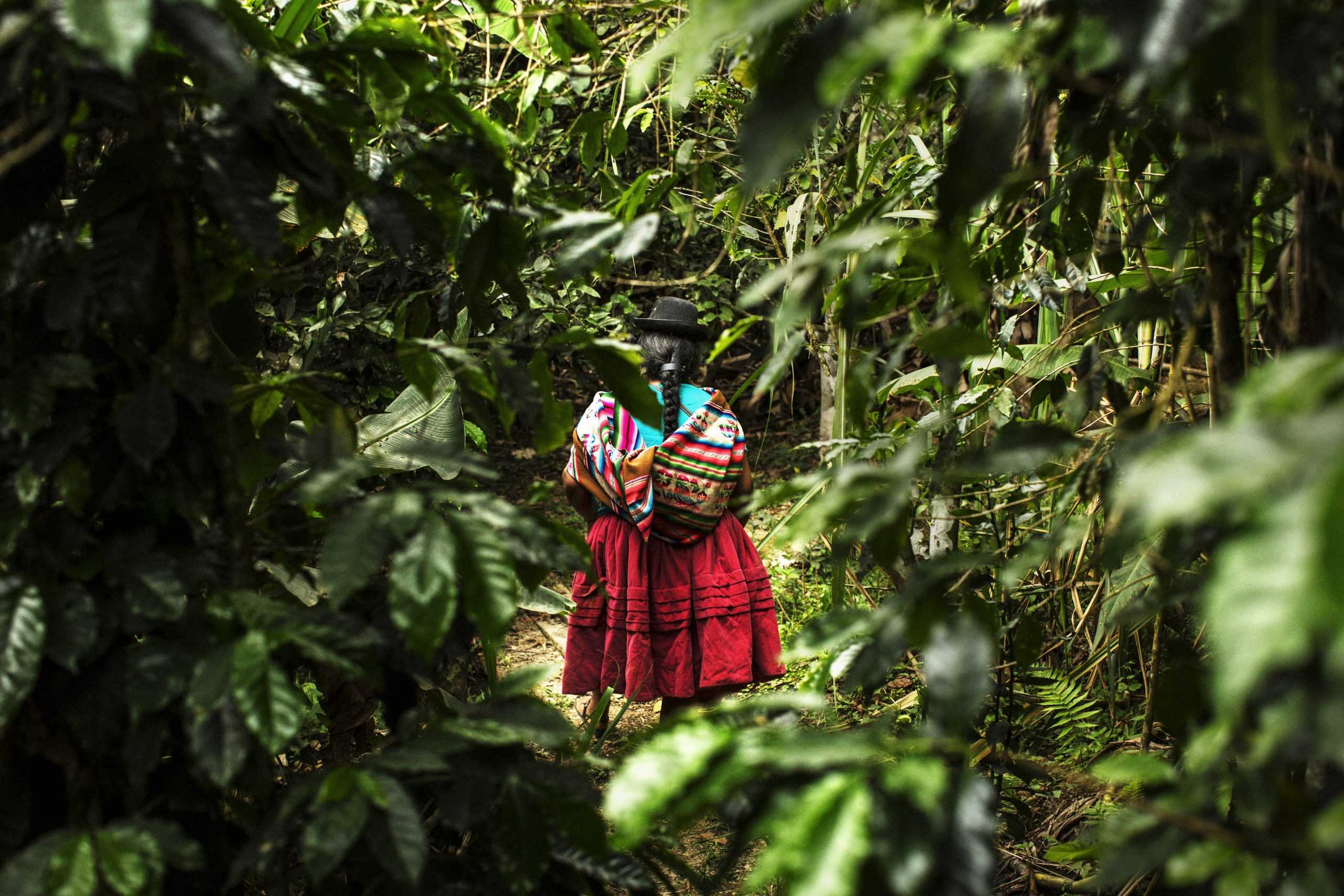Peruvian woman walking in the forest